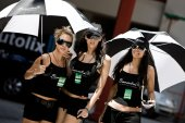 Pit Babes at International GT Open — Stock Photo