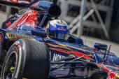 Daniel Ricciardo — Stock Photo