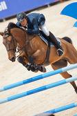 наездник на лошади во время глобального тура чемпионов по испании — Стоковое фото