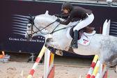 Rider på hästen under Global Champions Tour of Spain — Stockfoto