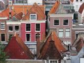 Roofs of houses. Leiden. Nederland — Stockfoto