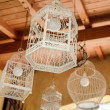 Bird cages lamp — Stock Photo #66039521