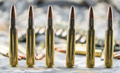Ammunitions for rifle — Stock Photo