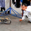 Marrakech, Morocco - April 20th of 2014: Snake charmer facing egyptian cobras at Djemaa el Fna square, a place recognized by UNESCO as a masterpiece of the Oral and Intangible Heritage of Humanity — Stock Photo #52411219