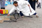 Marrakech, Morocco - April 20th of 2014: Snake charmer facing egyptian cobras at Djemaa el Fna square, a place recognized by UNESCO as a masterpiece of the Oral and Intangible Heritage of Humanity — Stock Photo