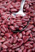 Cerca de frijoles rojos crudos — Foto de Stock