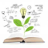Book with green plant and idea bulb — Stock Photo