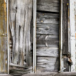 Old abandonned wooden door — Stock Photo #62895629