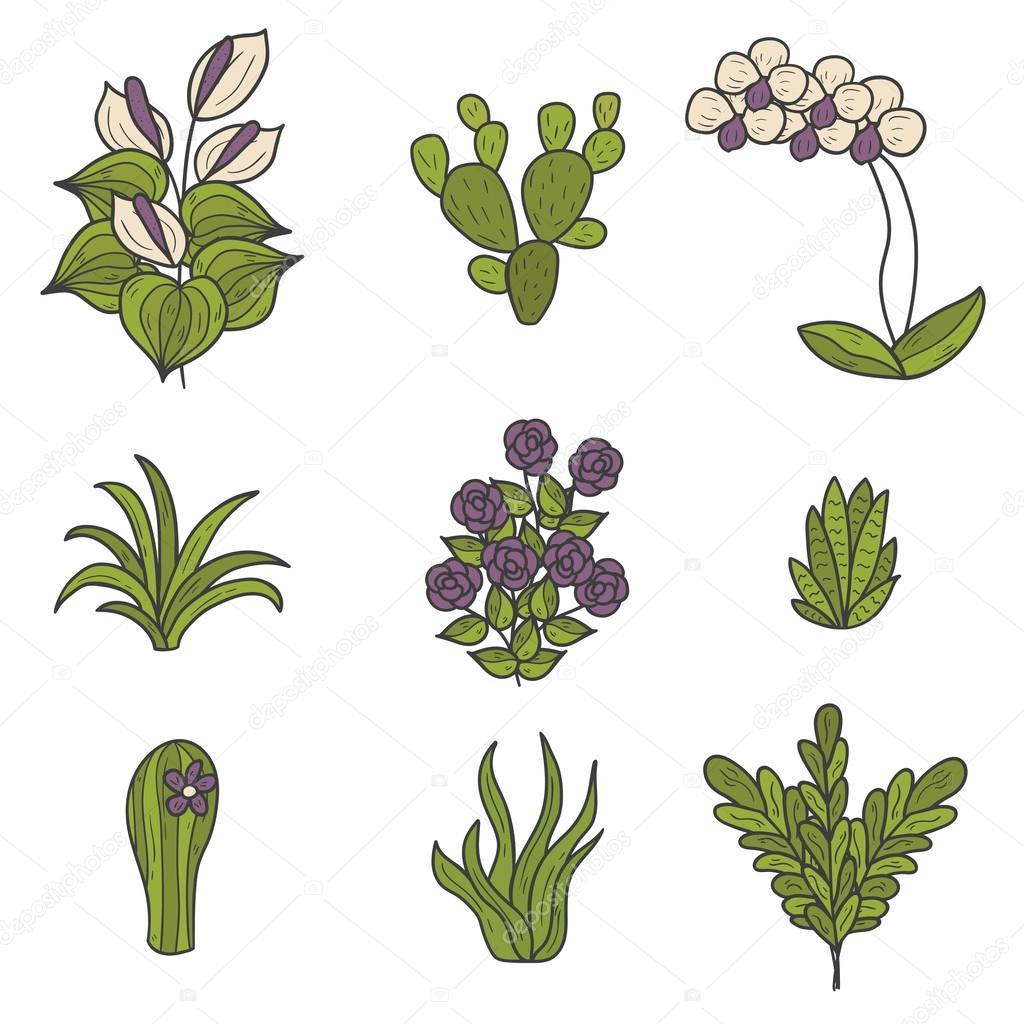Iconos de dibujos animados de plantas de interior - Imagenes de plantas de interior ...