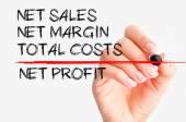 Net profit concept — Foto Stock
