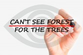 Can't see forest for the trees concept — Stock Photo