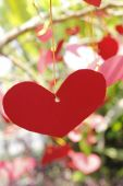 Red paper hearts on tree. — Stock Photo