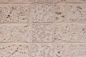 Laterite tekstura kamień — Zdjęcie stockowe