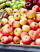 Apples in the market — Stock Photo