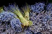 Close up of lavender flowers bouquet — Stock Photo