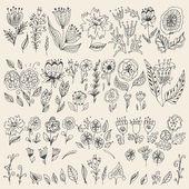 Satz von Hand gezeichneten Blüten und Blätter. — Stockvektor