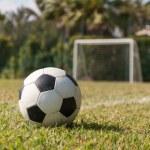 Soccer ball in grass on green field near five-a-side goal — Stock Photo