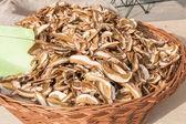 Dried porcini mushrooms in wicker bowl — Stock Photo