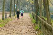 Women jogging in park in autumn — Foto de Stock
