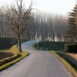 Winding road through forest — Stock Photo #64664775