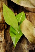 Dried and fresh bay leaves on wooden  — Foto Stock