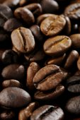 Coffee bean background — Stock Photo