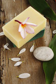 Soap and spa stone — Stock Photo