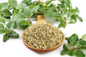 Dried oregano leaves on wooden spoon — Stock Photo