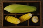 Yellow corn in wooden box — Stock Photo