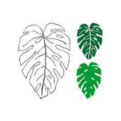 vecteurs pour philodendron illustrations libres de droits pour philodendron depositphotos. Black Bedroom Furniture Sets. Home Design Ideas