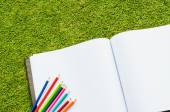 Color pencil and sketchbook on fresh spring green grass — Stockfoto
