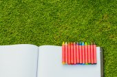 Wax crayons and sketchbook on fresh spring green grass — Stock Photo