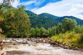 Wild mountain nature — Stock Photo