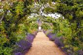 Colourful English summer flower garden with a path under archway — Stock Photo