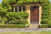 Entrance to traditional English honey golden brown stoned cottage, with wooden door surrounded by green vine, mullion windows, front garden with pink peony flowers, box hedge, small stone ornaments by the stairs, on summer sunny day — Stock Photo