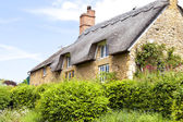 Traditional old Cotswold stone cottage with thatched roof and front garden overgrown with green shrubs on a sunny summer day — Stock Photo