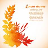 Watercolor painted autumn foliage — Stock Vector
