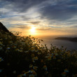Spring in the Aegean Sea, Santorini Island — Stock Photo #52871867