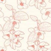 Seamless vintage  floral pattern with mock orange — Stock Vector