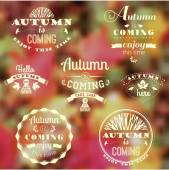 Set of Autumn Labels and Signs — Stock Vector