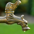 Decorative vintage brass tap water — Stock Photo #55785259
