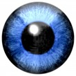 Detail of eye with blue colored iris and black pupil — Stock Photo #71251019
