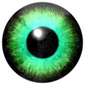 光緑着色されたアイリスと黒い瞳を持つ目の詳細 — ストック写真