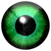 Detail of eye with light green colored iris and black pupil — Stock Photo