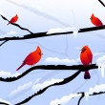 Christmas birds & Winter landscape — Stock Vector #53271903