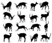 Deer Silhouette Set-Vector — Stock Vector