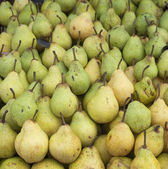 A crate of pears — Stock Photo