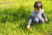 Cute little girl picking flowers on the meadow on a spring day — Stock Photo