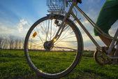 Color bike in sunny day, bike series — Stock Photo