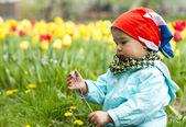 Adorable toddler girl gathering flowers — Stock Photo
